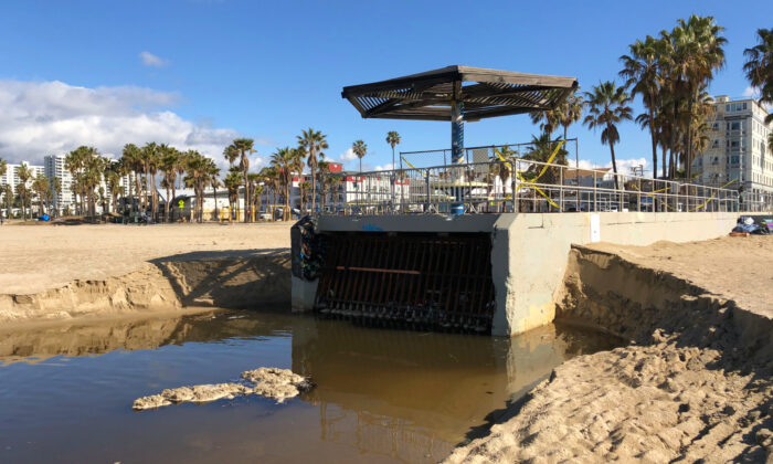 The Rose Avenue storm drain spills polluted runoff onto Venice Beach in Los Angeles on March 11, 2021. (Courtesy of Ursua Soledad)