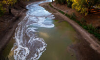ACCC Calls for Comprehensive Overhaul of Murray-Darling Water Markets