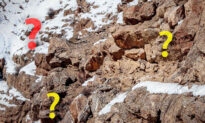 Can You Spot the Perfectly Camouflaged Snow Leopard in This 'Barren' Mountain Landscape?