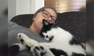 Woman Says Her Rescue Cat Helped Save Her Life After Detecting Breast Cancer