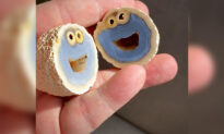 Geologist Finds Blue Quartz Volcanic Rock With Cross-Section That Looks Like Cookie Monster Inside