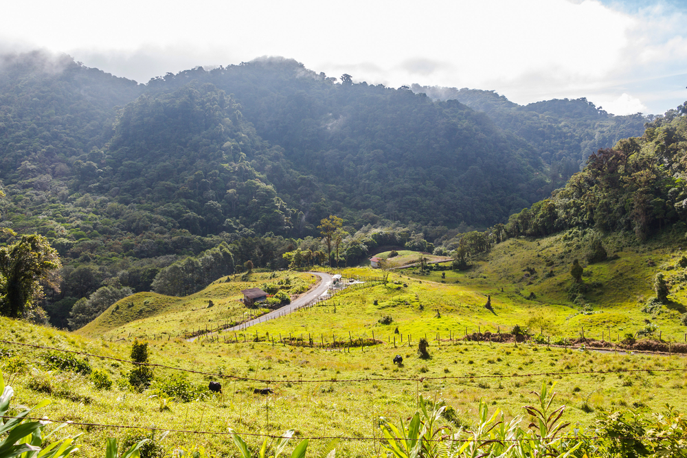 Panama,Boquete,Landscape,,On,The,Quetzal,Trail