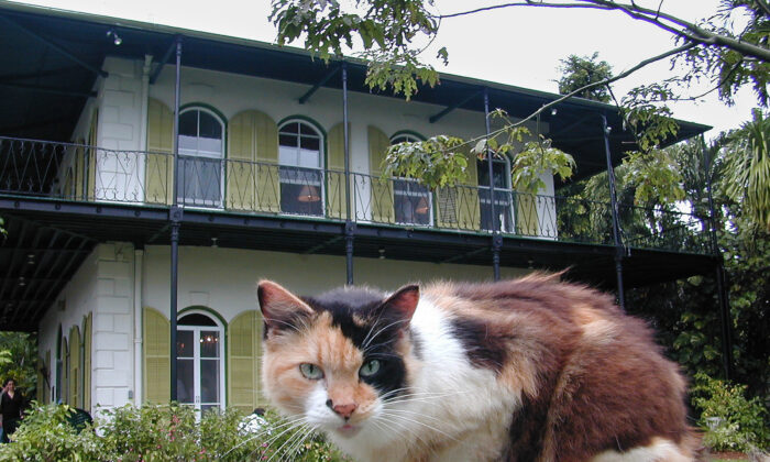 Ernest Hemingway's house in Key West is one of the most-visited spots in the city. (Courtesy of Victor Block)