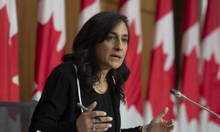 Public Services and Procurement Minister Anita Anand speaks during a news conference Monday December 14, 2020 in Ottawa. (THE CANADIAN PRESS/Adrian Wyld)