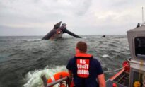 Coast Guard: 2 More Capsize Victims Recovered Off Louisiana