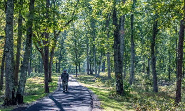A man walks down Battlefield Trail at Kings Mountain National Military Park. (JNix/Shutterstock)