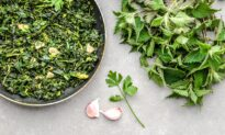 Taming the Nettle: A Romanian Springtime Tradition