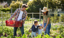 Making Family the Hub of Life Again