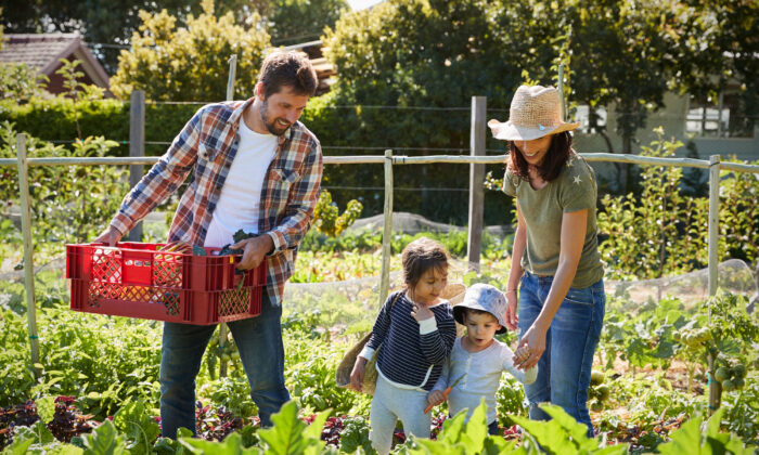 Involving children in joint projects like gardening helps to bond the family. (Monkey Business Images/Shutterstock)
