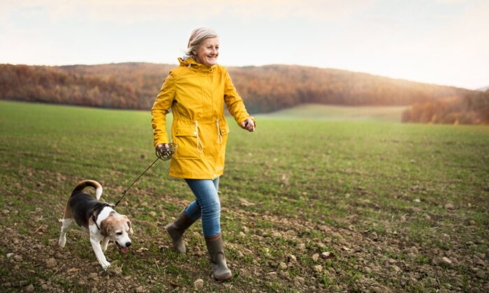 There's a very low barrier to entry, meaning almost everyone, regard- less of age or ability, can start walking regularly as a form of exercise.  (Halfpoint/Shutterstock)
