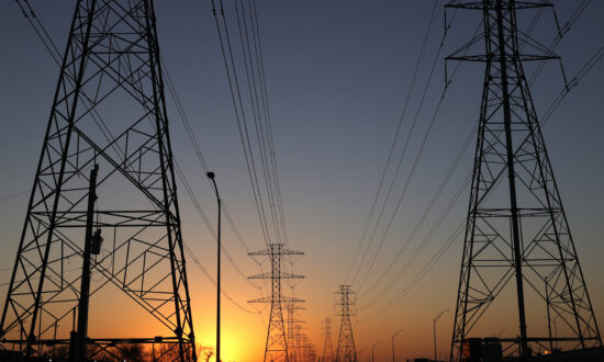 Protecting the Grid From Blackouts—and Communism
