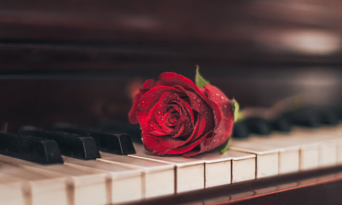 Can flowers be translated into music? (Karalee/Shutterstock)