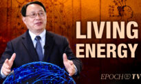 Living Energy: How the Energy of Life Integrates With the Science of Medicine to Keep Us Strong and Healthy