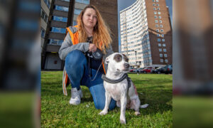 Heroic Dog Saves Mom's Life After She Was Attacked With a Knife by Strangers on the Street
