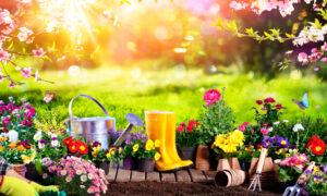 Spring Garden Pest Control