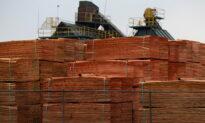 Lumber Prices Drop Below $1,000 After Skyrocketing to 'Nosebleed' Highs in May