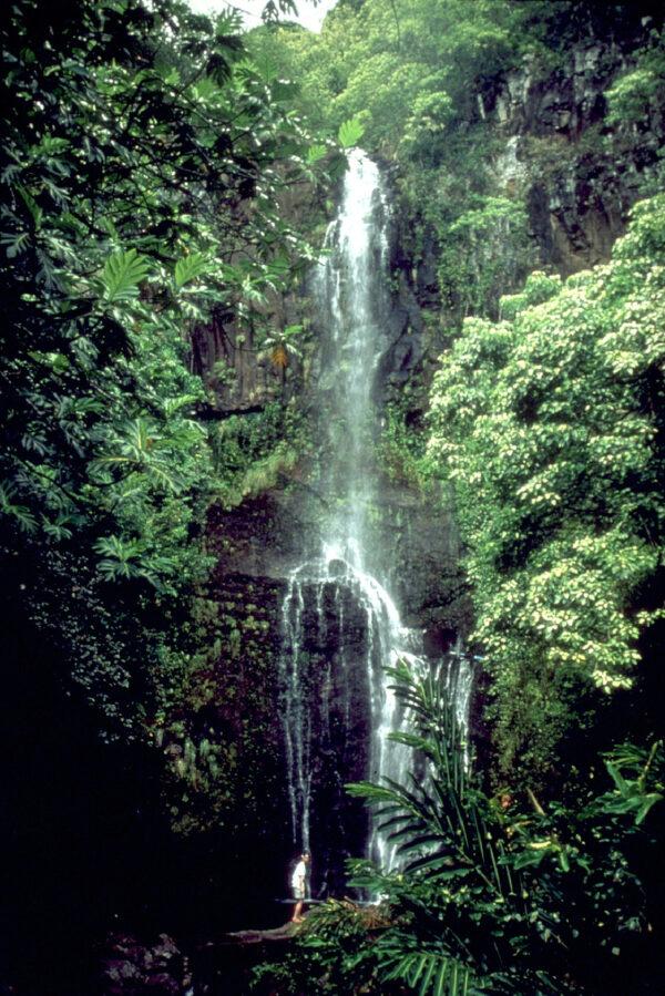 hawaii waterfall