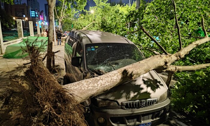 A car was damaged by a fallen tree during a violent storm in Nantong, Jiangsu province, China, on April 30, 2021. (STR/AFP via Getty Images)