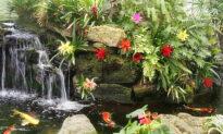 Virtual Garden Tour Showcases Southern California Gardens