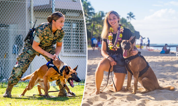 (L:  Seth Rosenberg/Department of Defense; R: Courtesy of American Humane)