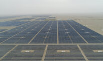 Beijing's Solar Panel Plan Plunges Chinese Farmers Into Heavy Debt