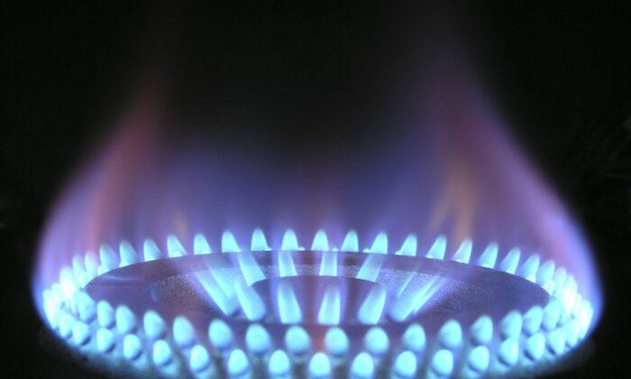 A blue flame on a gas burner. (Magnascan via Pixabay)