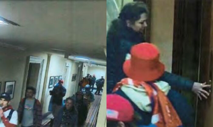 In these still images from surveillance footage, a woman the FBI believes is Marilyn Hueper is pictured inside the U.S. Capitol on Jan. 6, 2021. (FBI)