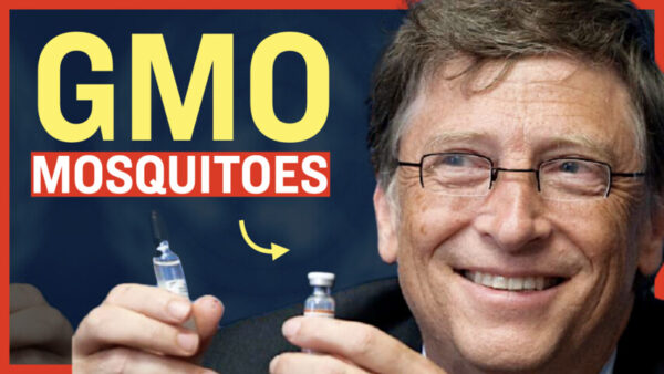 Facts Matter (May 7): Bill Gates-Funded Company Releases Genetically Modified Mosquitoes in US