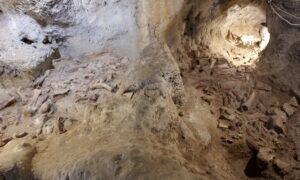 Archaeologists Uncover Neanderthal Remains in Caves Near Rome