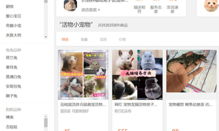 A delivery station in China's Sichuan province was recently caught delivering 156 boxes of pets, including cats and dogs, as ordinary express. The picture shows a live pet sale page on Taobao, a platform owned by Alibaba, China's largest e-commerce company. (Screenshot via The Epoch Times)