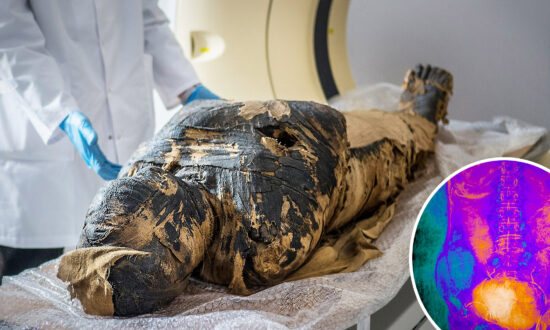 Scientists Discover That Egyptian Mummy Thought to Be Male Priest Was Actually Pregnant Woman in Her 20s