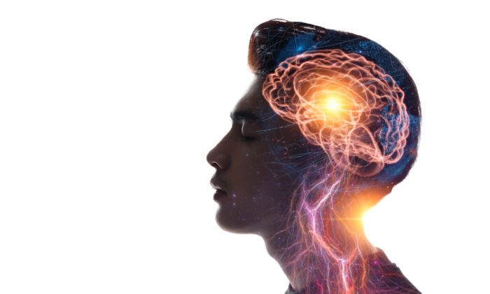 Learn what nutrients can help protect the miracle of your mind.(sutadimages/Shutterstock)