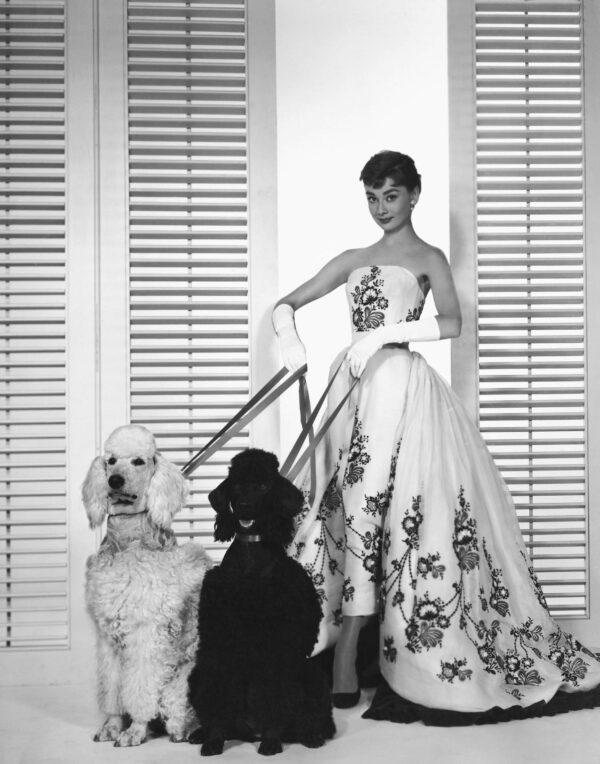 Audrey Hepburn in Sabrina gown
