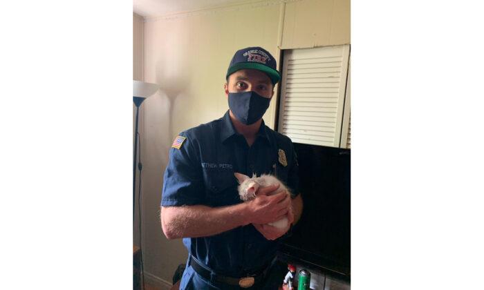 Firefighers were called to rescue a kitten whose curiousity got the better of him. (Courtesy of the Orange County Fire Authority.)