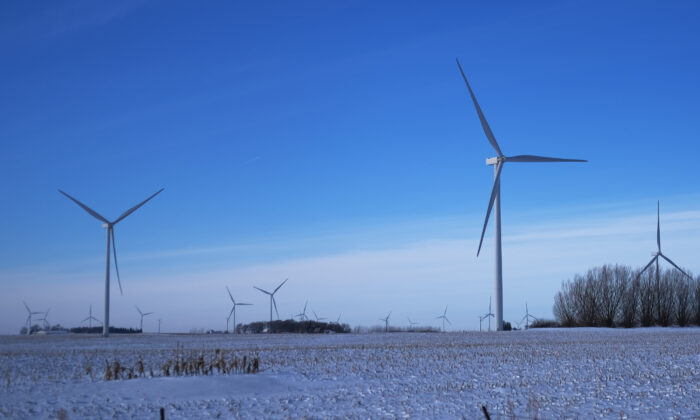 A wind farm, used to generate wind power, stands along the roadside in Iowa in Sanborn, Iowa, on Jan. 16, 2020. (Spencer Platt/Getty Images)