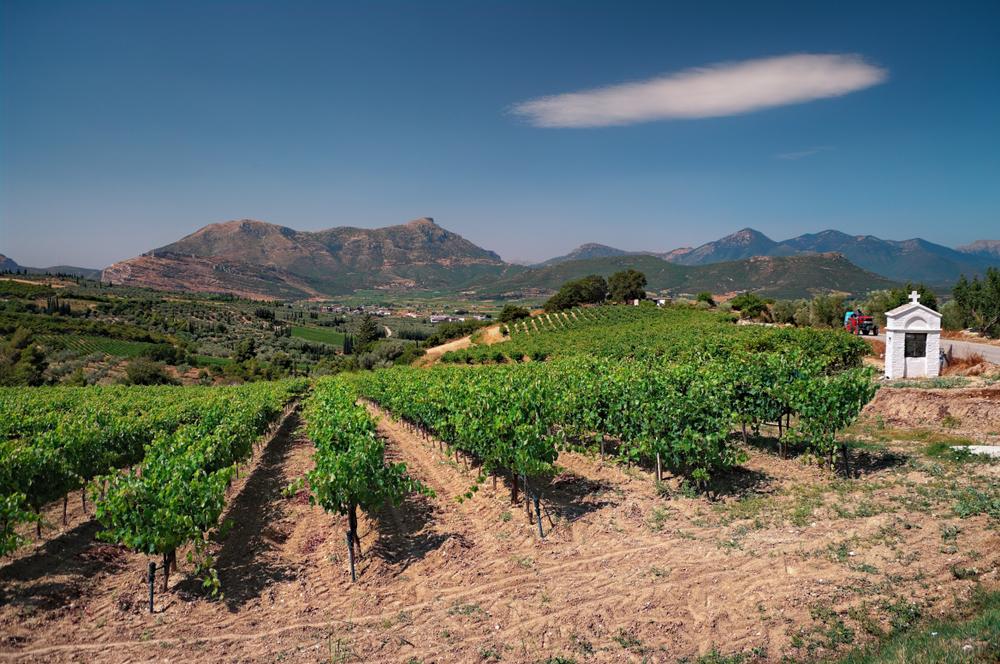 White,Cloud,Over,Vineyard,In,Nemea,Wine,Roads,,Greece