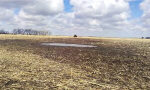 Farmers Sue Over Federal Regulation of Mud Puddle on Their Land
