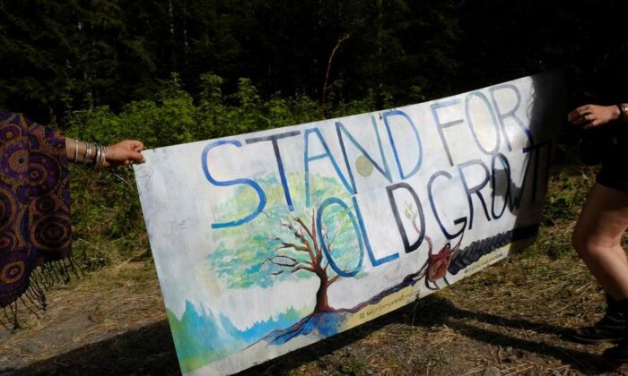 A banner is held at the entrance to a new blockade that protesters formed near Port Renfrew, B.C., on May 11, 2021. The RCMP in British Columbia say the enforcement of a court injunction banning blockades of logging activities in the area has begun. (Jen Osborne/The Canadian Press)