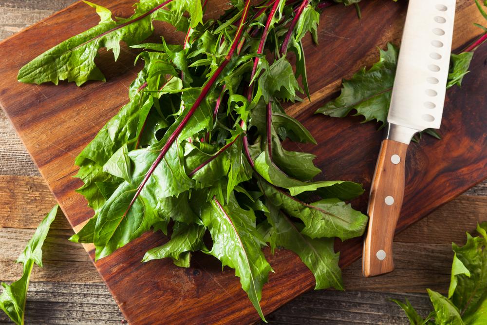 Raw,Organic,Red,Dandelion,Greens,Ready,To,Chop