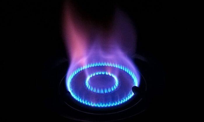 A blue flame on a gas stove. (Vasudevan Kumar via Pixabay)