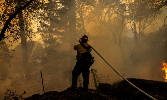 A private wild land firefighter monitors a backfire along Old Lawley Toll Road during the Glass Fire in Calistoga, Calif., on Oct. 2, 2020.  (Stephen Lam/Reuters File Photo)