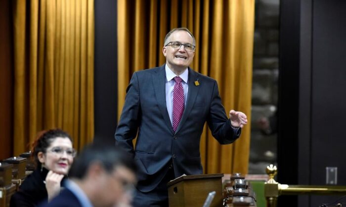 NDP MP Peter Julian rises during Question Period in the House of Commons on Parliament Hill in Ottawa, on Nov. 20, 2020. (The Canadian Press/Justin Tang)