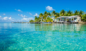 Big Pleasures in a Tiny Country: Belize From Rainforest to Coast