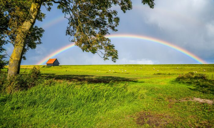 Chasing positive thoughts can be like trying to reach a rainbow. (VarnaK/Shutterstock)