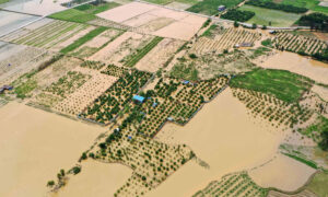 China in Focus (May 27): Severe Weather Conditions in 13 Chinese Provinces
