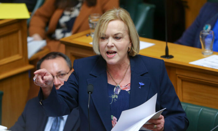 National Party leader Judith Collins speaks during budget day 2021 at Parliament on May 20, 2021 in Wellington, New Zealand. (Hagen Hopkins/Getty Images)