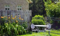 6 Tips to Save Money in the Yard and Garden
