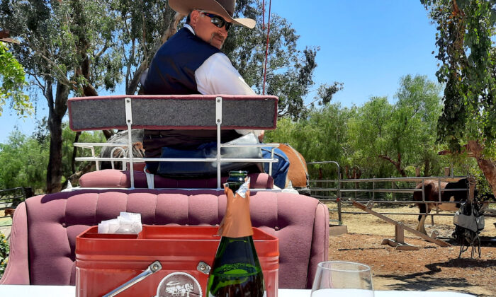 Mark Matson, co-owner of the Temecula Carriage Co. in Temecula, Calif., leads a horse-drawn wine tour. (Courtesy of Jim Farber)
