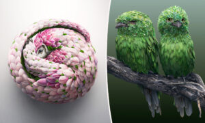 Artist Creates Gorgeous Animal Images Using Thousands of Nature Photos in Spectacular Unison