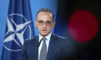 EU Should Abolish Veto Rights for Individual States: German Foreign Minister